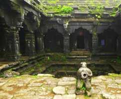 Tour Package In Mahabaleshwar